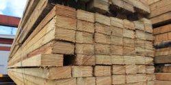 Hard Timber