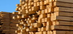 Soft Timber